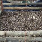 compostcarbon